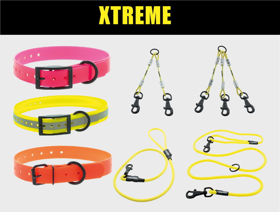 Serie XTREME